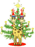 Baby giraffe with Christmas tree Stock Images