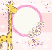 Baby giraffe Stock Photo