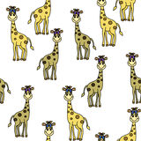 Baby giraffe pattern Royalty Free Stock Image