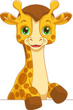 Baby Giraffe. Portrait of a cute baby giraffe for the frame royalty free illustration