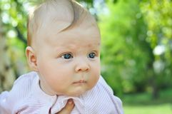Baby-girl Stock Photography