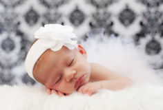 Baby girl. Newborn baby girl sleeping while wearing white bow and tutu Stock Photo