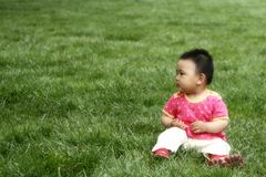 Baby girl. A chinese baby girl on the meadow Royalty Free Stock Photos