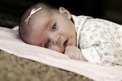 Baby Girl. New born baby girl lying on a blanket Royalty Free Stock Photos