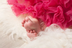 Baby girl, 6 month Stock Images