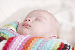 Baby girl aged 6 weeks Royalty Free Stock Photo