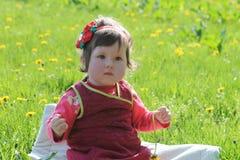 Baby girl along dandelion lawn Royalty Free Stock Photo