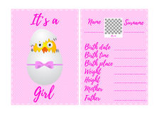 Baby girl announcement card royalty free illustration