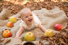 Baby girl with apples. Cute Baby girl with apples Stock Photos