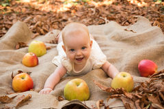 Baby girl with apples. Cute Baby girl with apples Stock Image