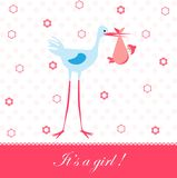 Baby girl arrival card Royalty Free Stock Image