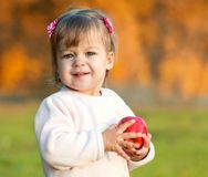 Baby girl in the autumn park holding red apple Stock Photos