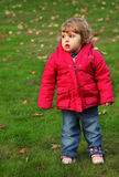 Baby girl autumn portrait Stock Image