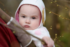 Baby girl in a baby carrier Royalty Free Stock Photos