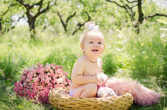 Baby girl  in a basket Royalty Free Stock Photo