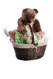 Baby girl in a basket with toy bear Stock Image