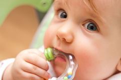 Baby girl biting toy. Portrait of cute baby girl biting on toy Stock Images
