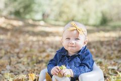 Baby Girl with Bow 0n Head Playing with Leaves on a Fall Day. Baby Girl with Bow in Head Playing with Leaves on a Fall Day in Colorado stock images