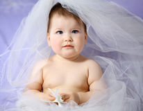 Baby girl. With bridal veil Stock Images
