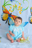 Baby girl with butterfly wings Stock Photos