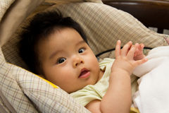 Baby girl in a car seat Royalty Free Stock Photo