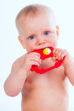 Baby girl chewing a rattle toy Stock Images