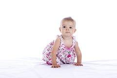 Baby girl crawling Stock Image