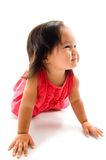 Baby Girl Crawling Royalty Free Stock Photography