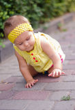 Baby girl crawling. Baby girl is crawling along a path in a park royalty free stock images