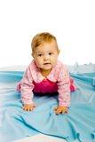 Baby girl crawling on the blue coverlet. Studio Royalty Free Stock Images