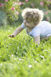 Baby Girl Crawling On Grass Stock Photography