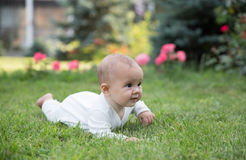 Baby girl crawling on the grass with pink flowers Royalty Free Stock Photo