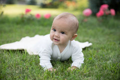 Baby girl crawling on the grass with pink flowers Royalty Free Stock Photography
