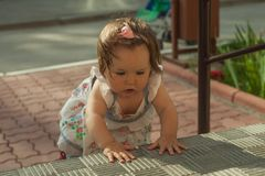 Baby girl crawling up the stairs. High angle view stock photo