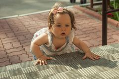 Baby girl crawling up the stairs. High angle view royalty free stock images