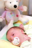 Baby girl in crib with teddy. Portrait of baby girl in crib or cot with pacifier and teddy bear Royalty Free Stock Photo
