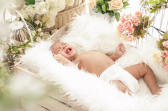 Baby girl crying while lying in box with fur blanket Stock Photos