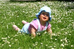 Baby girl and daisy Stock Photo