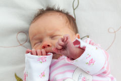 Newborn baby girl clutching her hands to her face Royalty Free Stock Photo