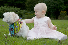 Baby girl with dog. Cute baby girl in pink dress plays in grass with cute small dog royalty free stock image