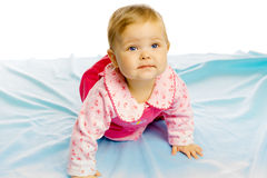Baby girl in a dress crawling Royalty Free Stock Photography