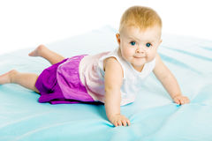 Baby girl in a dress creeps on the blue coverlet Royalty Free Stock Photography
