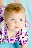 Baby girl in a dress creeps on the blue coverlet Royalty Free Stock Image