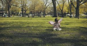 Baby girl dressed in fairy wings playing in the park.