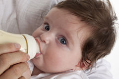 Baby girl drinking from a baby bottle Royalty Free Stock Image