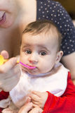 Baby girl eating food for first time Royalty Free Stock Images