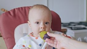 A Baby Girl Eating Plum at Home stock footage