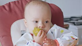 A Baby Girl Eating Plum at Home stock video footage