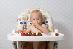 Baby girl eating strawberries. Baby girl sitting in a highchair eating fresh strawberries Royalty Free Stock Photo