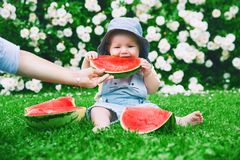 Baby girl eating watermelon on green grass in summertime on natu stock images